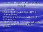 2002 audit software usage survey
