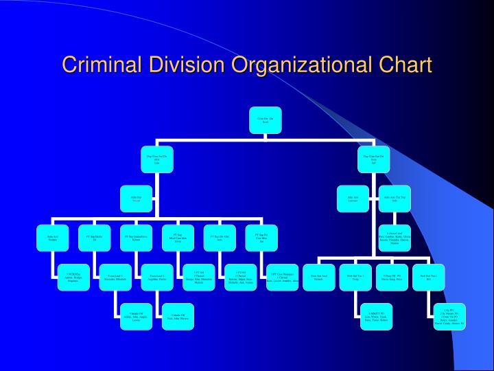 Criminal Division Organizational Chart