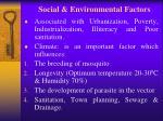 social environmental factors