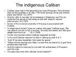 the indigenous caliban