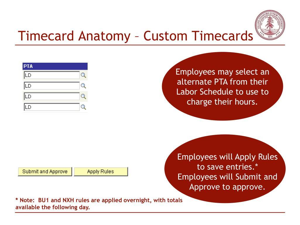 Timecard Anatomy – Custom Timecards