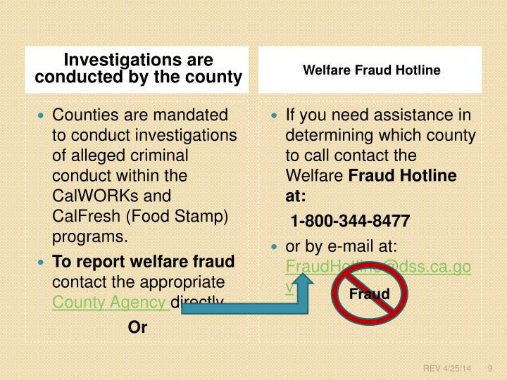 welfare fraud essay The tools you need to write a quality essay or term paper saved essays but suppliers of services to welfare recipients account for most of the fraud in welfare.