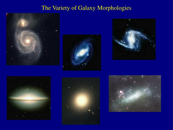 The Variety of Galaxy Morphologies