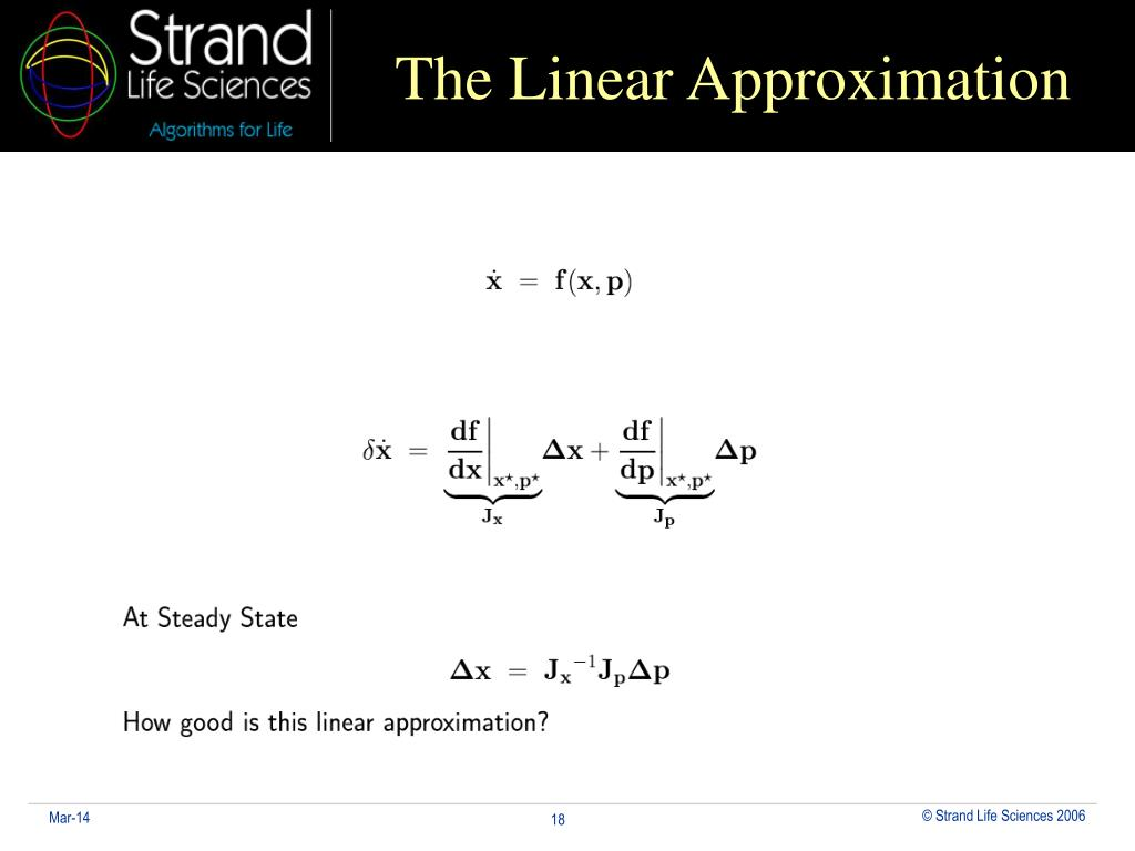 The Linear Approximation
