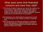 what were some anti federalist concerns and were they valid1