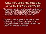 what were some anti federalist concerns and were they valid2