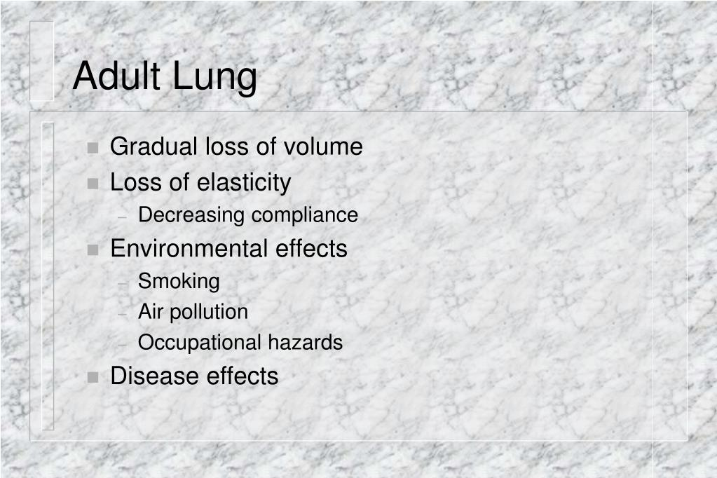 Adult Lung