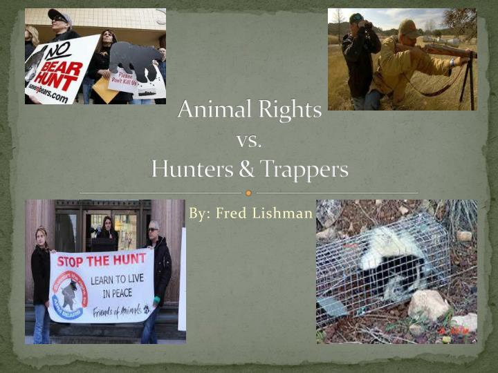 animal rights versus human rights Why the animal/nature rights vs human duties distinction matters by wesley j smith about wesley j smith april 10, 2018 10:49 am in.