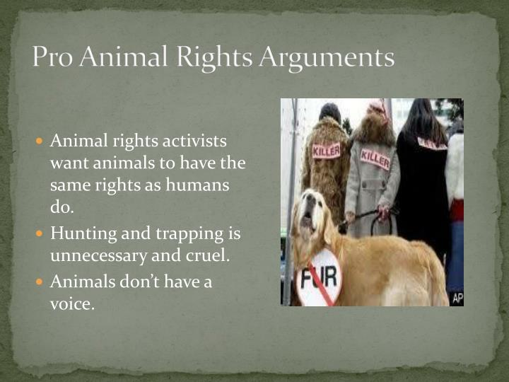 what rights do animals have Animal rights and/or animal abuse: what place do animals have in our society tabitha mason itt technical institute written analysis en3220 ms stacey tetloff may 27, 2012 a few weeks ago i decided to do my research paper in regards to animal abuse knowing from the very beginning that i.