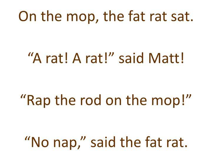 On the mop, the fat rat sat.