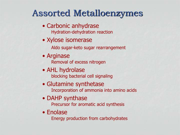assorted metalloenzymes n.