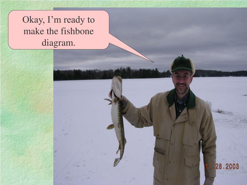 Okay, I'm ready to make the fishbone diagram.