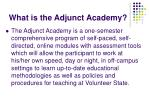 what is the adjunct academy