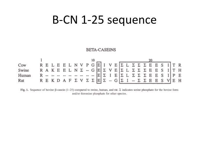 B-CN 1-25 sequence