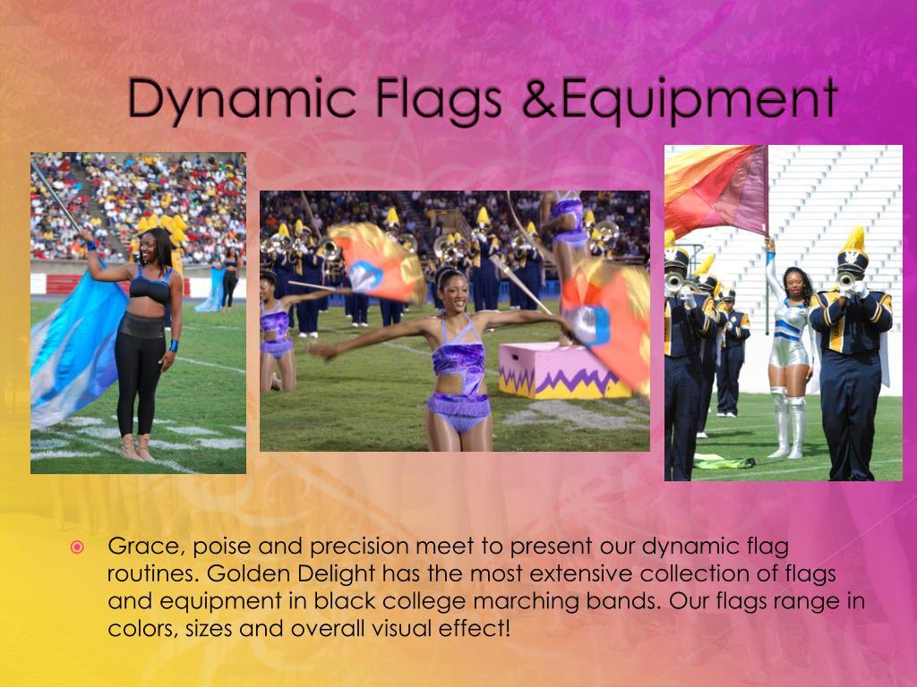 Dynamic Flags &Equipment