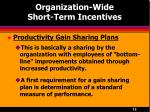 organization wide short term incentives