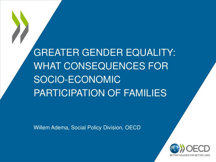 greater gender equality what consequences for socio economic participation of families n.