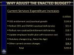 why adjust the enacted budget10