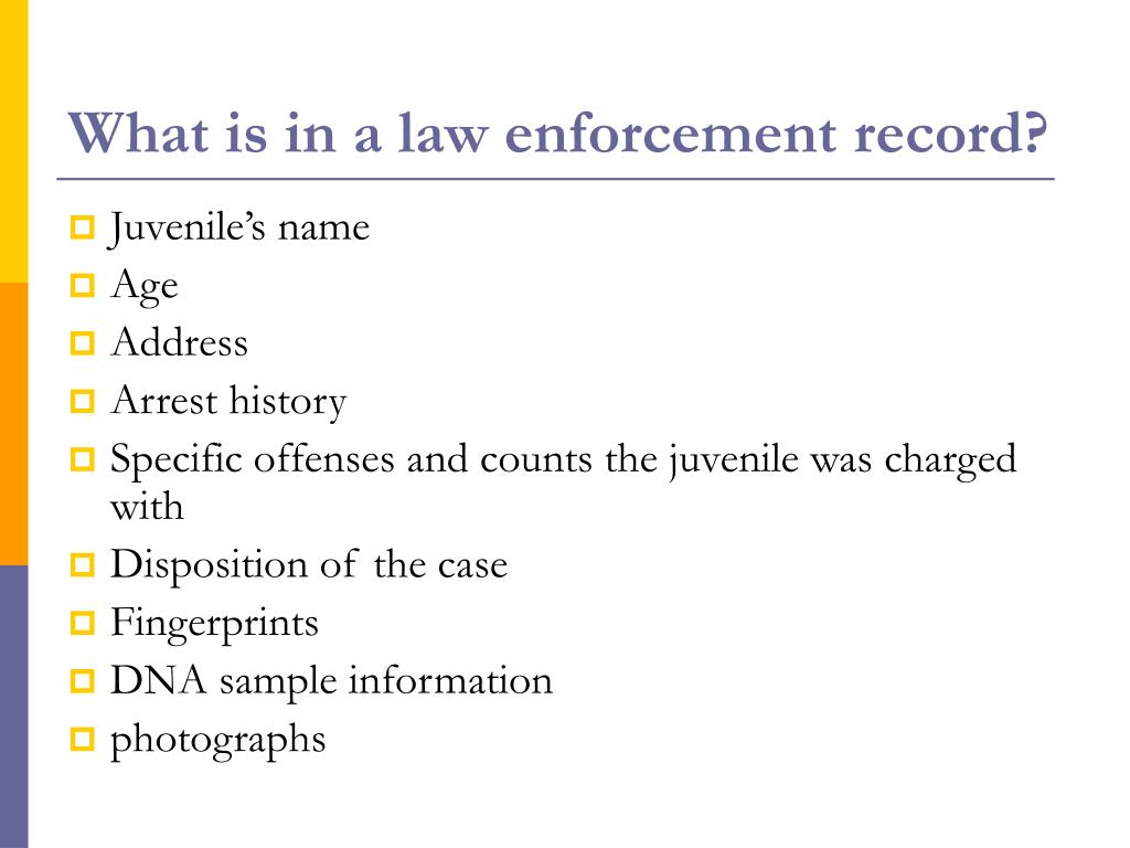 What is in a law enforcement record?