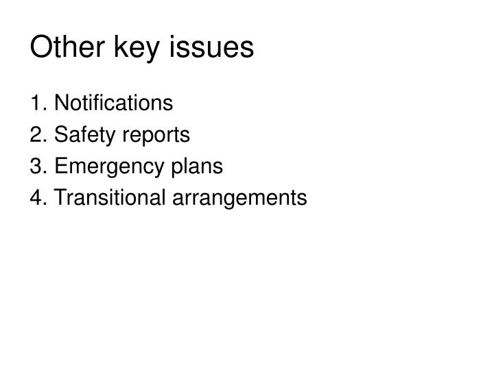 Other key issues