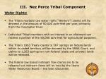 iii nez perce tribal component