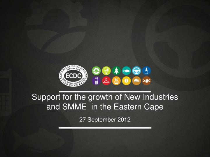 support for the growth of new industries and smme in the eastern cape n.