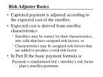 risk adjuster basics