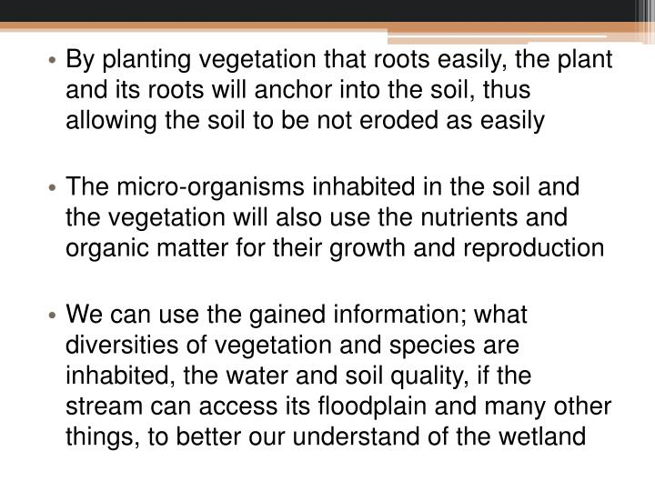 By planting vegetation that roots easily, the plant and its roots will anchor into the soil, thus allowing the soil to be not eroded as easily
