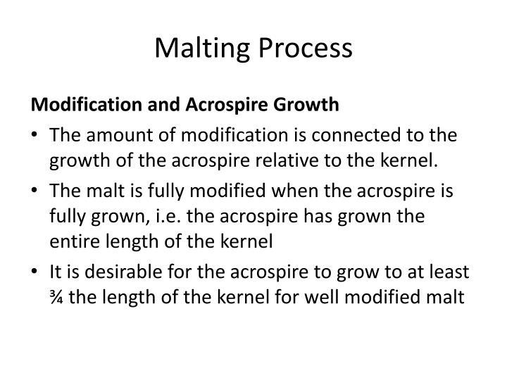 Malting Process