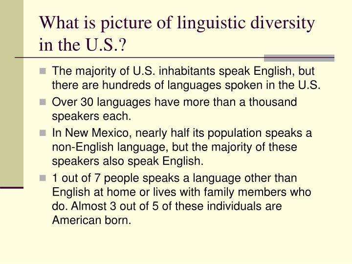 What is picture of linguistic diversity in the U.S.?