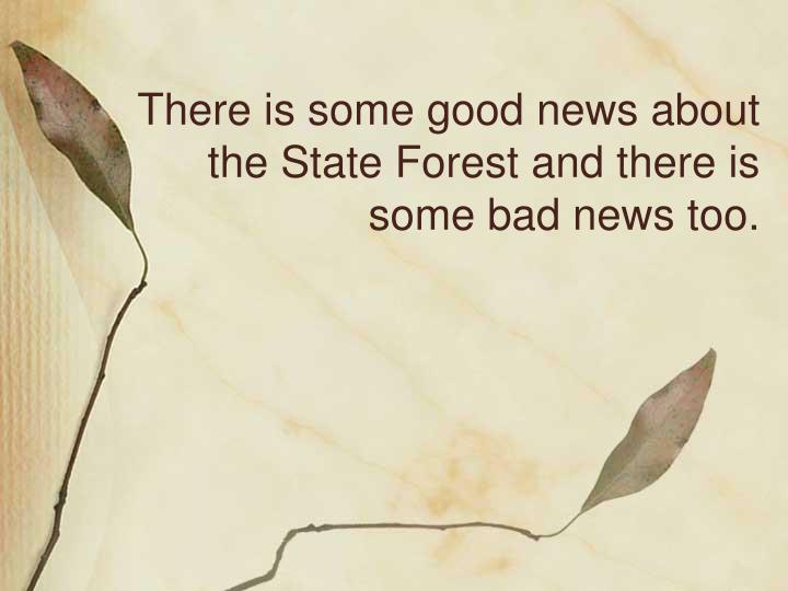 There is some good news about the State Forest and there is some bad news too.
