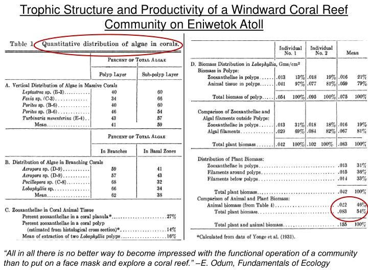Trophic Structure and Productivity of a Windward Coral Reef Community on Eniwetok Atoll