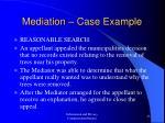 mediation case example23