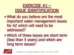 exercise 1 issue identification