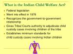 what is the indian child welfare act
