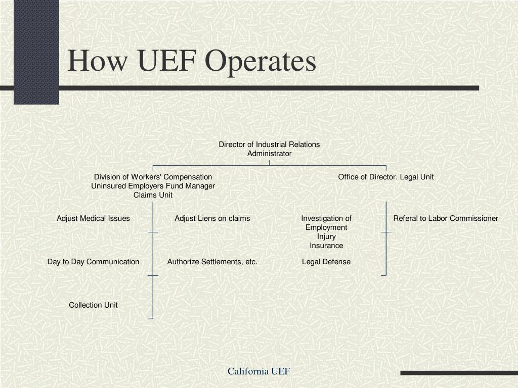 How UEF Operates