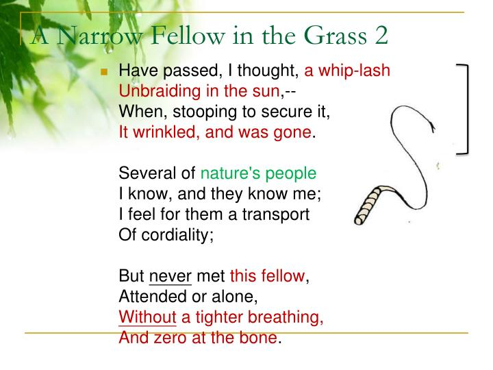 a narrow fellow in the grass meaning