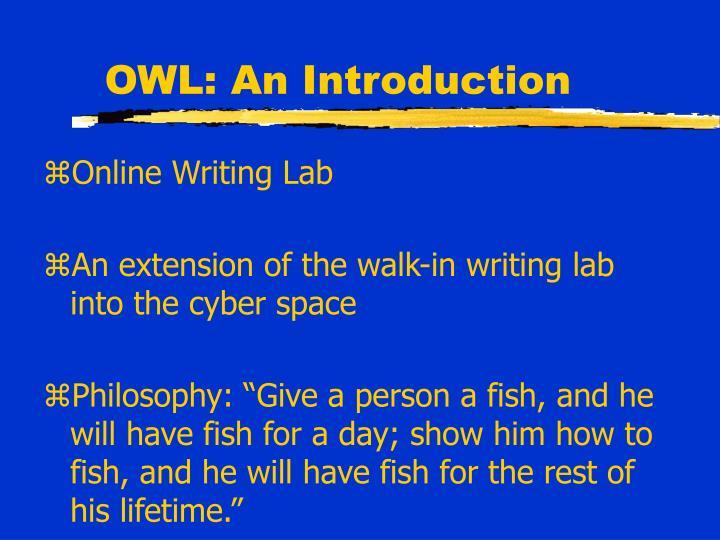 Owl an introduction