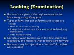 looking examination