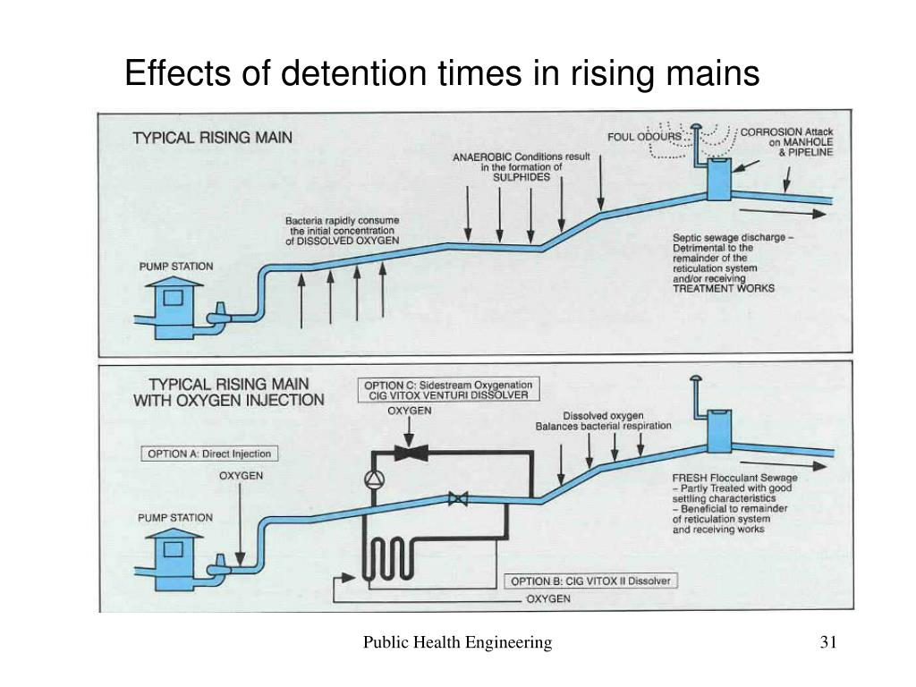 Effects of detention times in rising mains