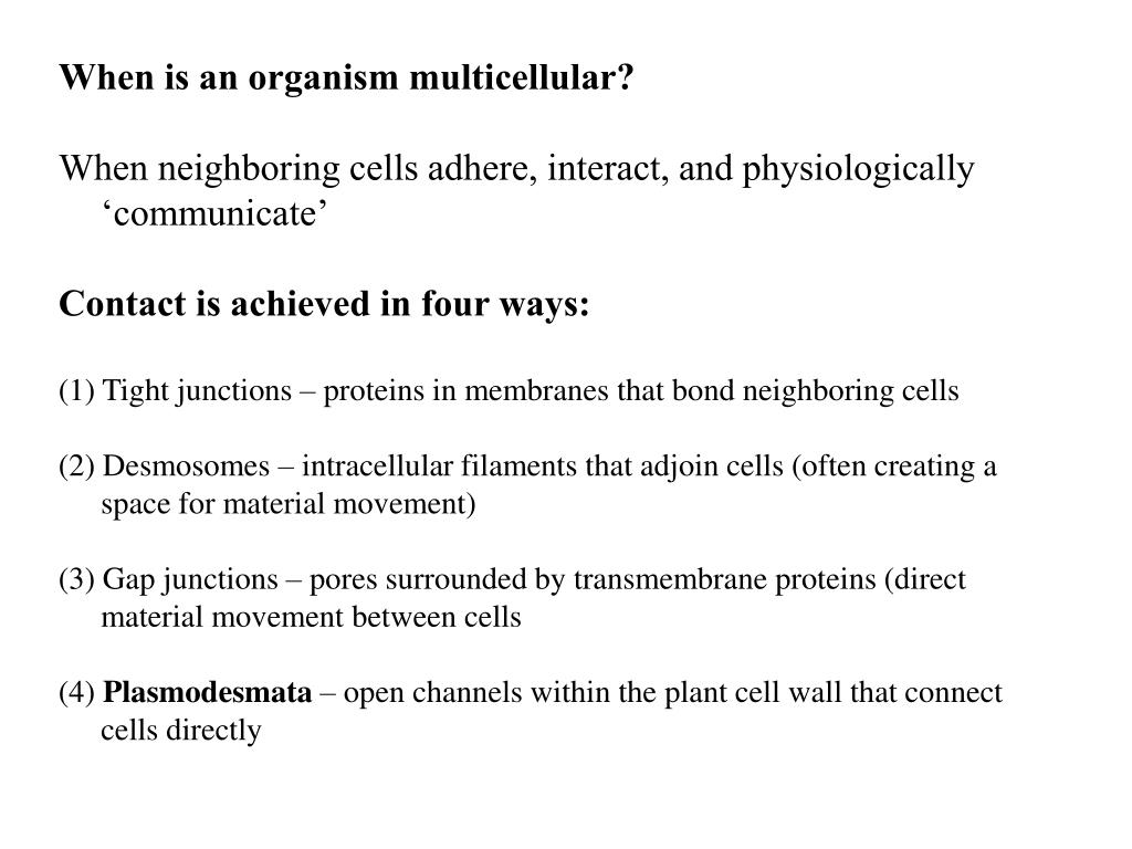 When is an organism multicellular?