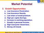 market potential1