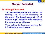 market potential11
