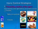 injury control strategies