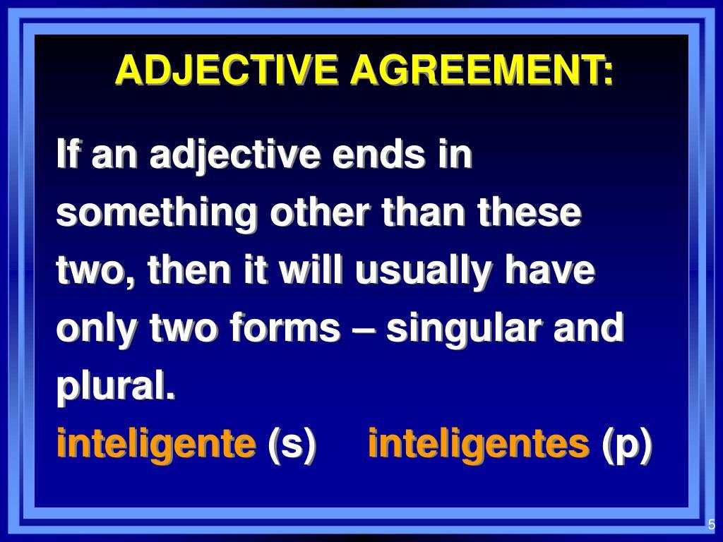 ADJECTIVE AGREEMENT: