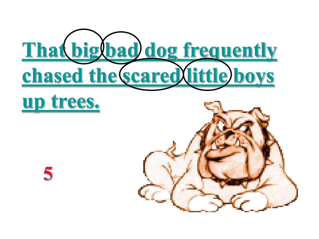 That big bad dog frequently chased the scared little boys up trees.