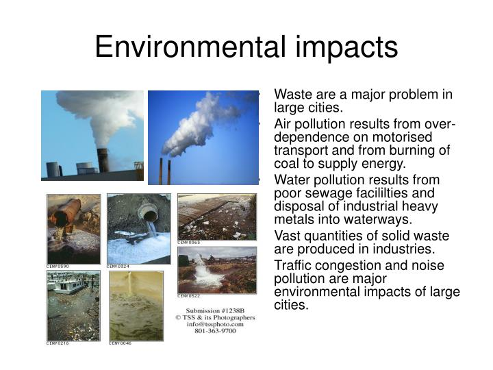 essay about pollution environment This free environmental studies essay on essay: pollution is perfect for environmental studies students to use as an example.