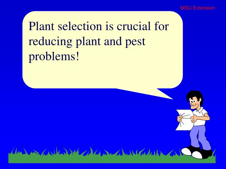 Plant selection is crucial for reducing plant and pest problems!