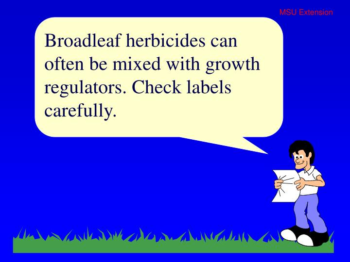 Broadleaf herbicides can often be mixed with growth regulators. Check labels carefully.