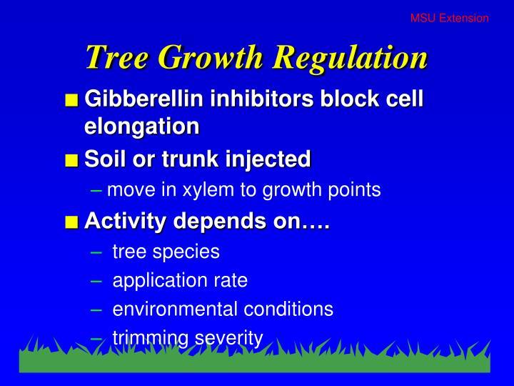 Tree Growth Regulation